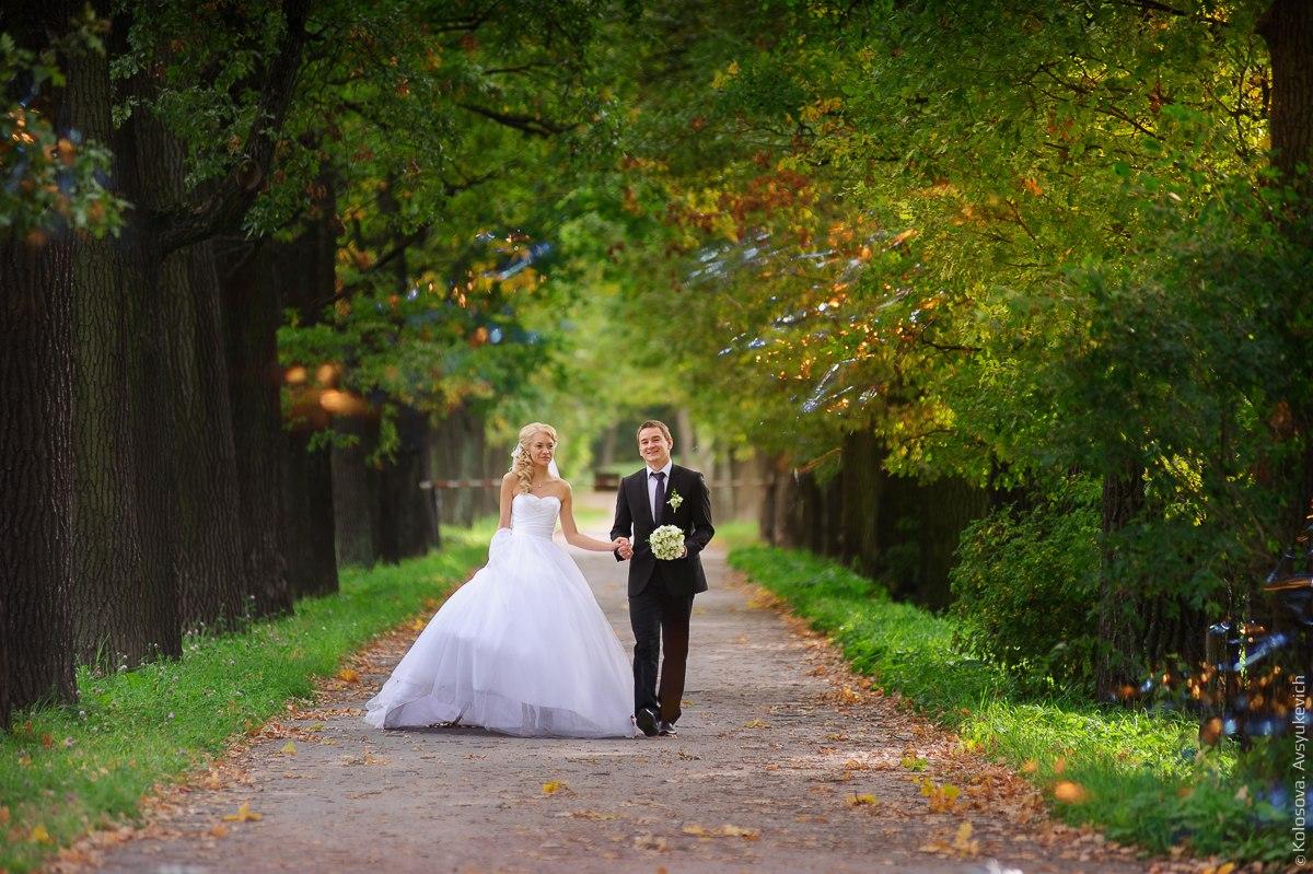 Свадебная прогулка в Александровском парке